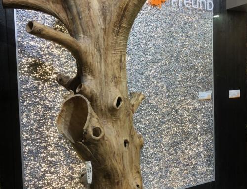 Da strahlt der Baum